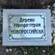 tuapse-skver-gorodov-geroev-23