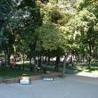 voronezh-prospekt-revolucii-08