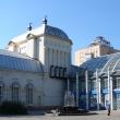 voronezh-teatr-kukol-02